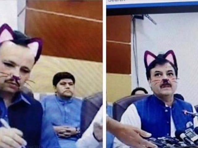 Funcionarios del gobierno pakistaní olvidan apagar el filtro de gato en la conferencia de un ministro en Facebook Live
