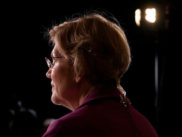 Elizabeth Warren the Fighter è tornata