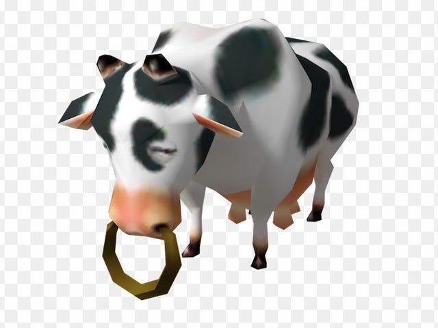 แน่นอนให้วัวใช้ VR