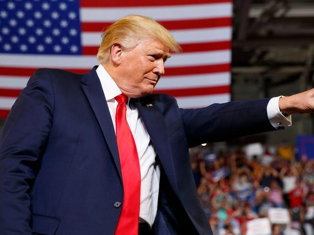 Las principales búsquedas en Merriam-Webster incluyen 'fascismo' y 'racismo' después del último mitin del presidente Trump