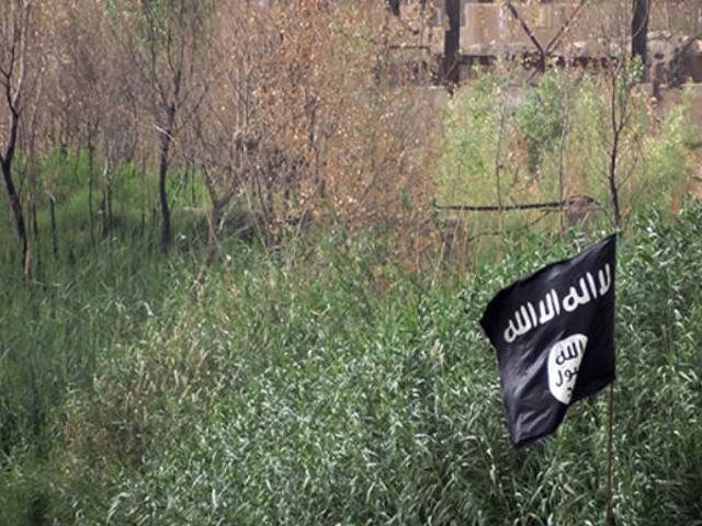 Remaja Ditangkap untuk Menggunakan 57 Akaun Twitter untuk Recruit untuk ISIS dari Rumah Orang Tua