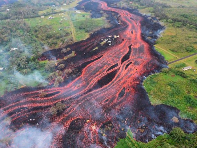 La lava del volcán Kilauea er en af de vigtigste planter i byen Hawái