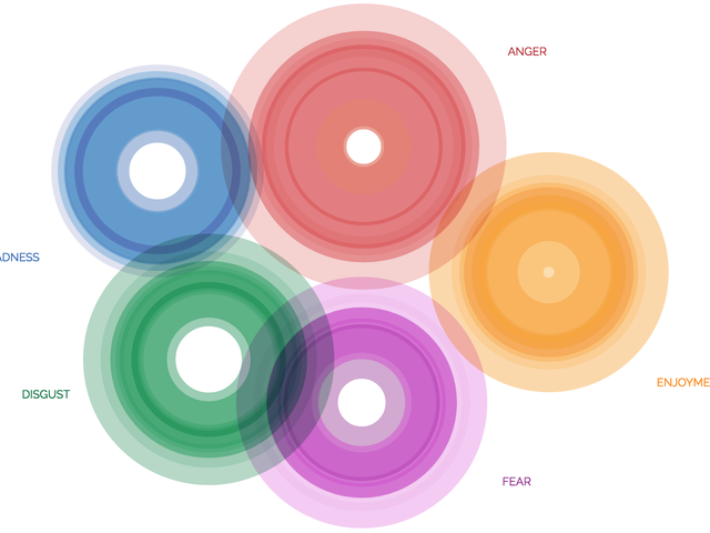 Visualize Your Emotions Based on Psychology and the Dalai Lama's Insight