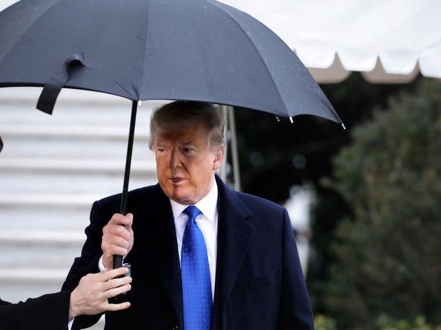 """总统面部皮肤与他的脖子不符,称弹Imp听证会是""""大骗局"""""""