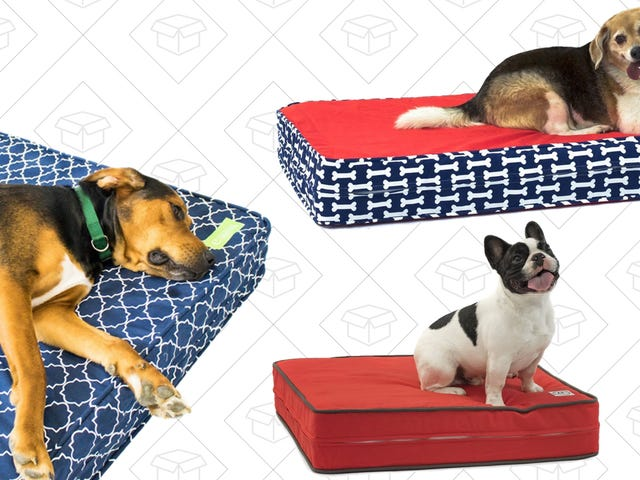 Give Your Very Good Dog What They Deserve: A Memory Foam Bed