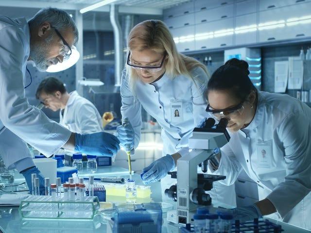 """Παρουσιάζοντας το """"Conan The Bacterium"""" και άλλα εξαιρετικά ονομαζόμενα ακαδημαϊκά έγγραφα"""