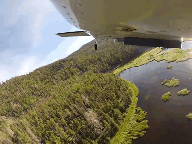 La sorprendente forma de repoblar Los Lagos en Utah: arrojando dặm de Peces desde Avion un