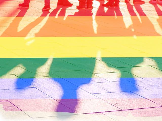 В эпоху Дональда Трампа люди в возрасте от 18 до 34 лет менее воспринимают сообщество ЛГБТК, считает GLAAD