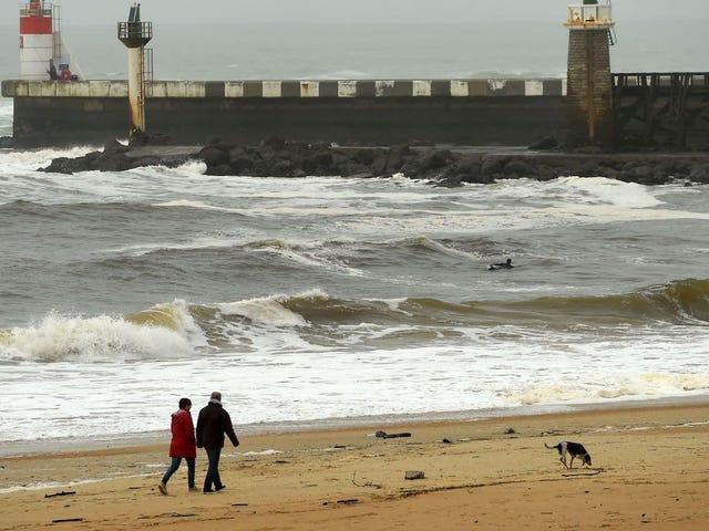 Una tonelada de cocaína se está lavando en la costa de Francia