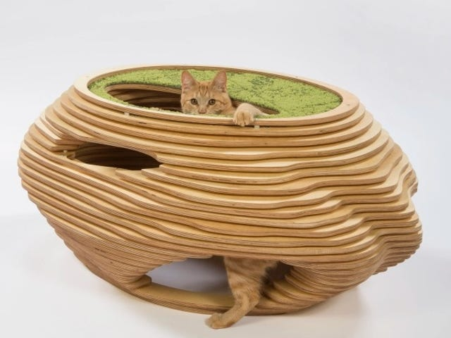 Behold the Best-Designed Cat House Any Cat Will Still Completely Ignore