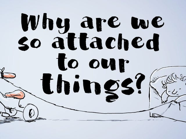 Why We're So Attached to Our Stuff