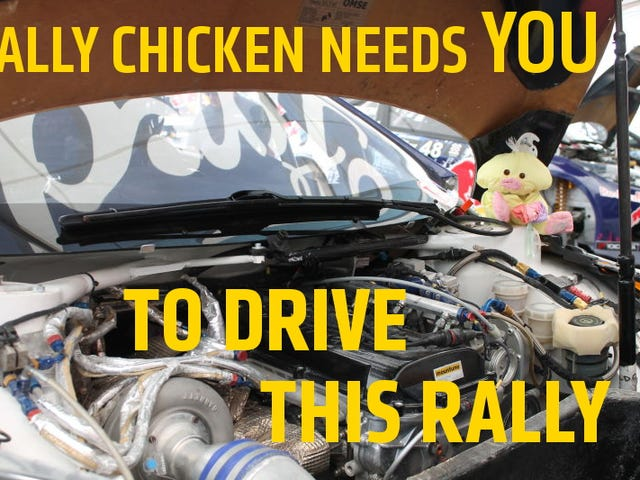 Your Poultry Needs You