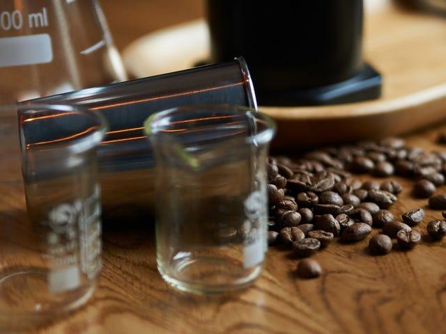 Die Wissenschaftler in Seattle bereiten sich auf eine Welt ohne Kaffeebohnen vor
