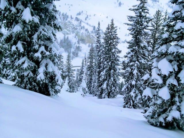 '18/'19 Ski Blog (Post #7) -Solitude and Alta, UT
