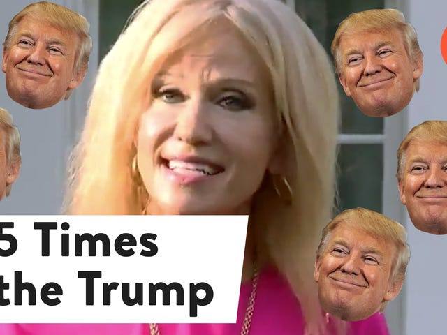 Kellyanne Conway Thinks We're Too Focused on Trump—Really