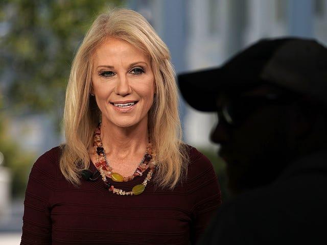 Ex-Trump Staffer Says Kellyanne Conway Is the White House's Leaky Cruella de Vil