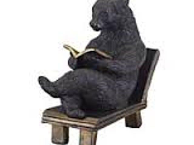 Bienvenue à Can Bears Lire?
