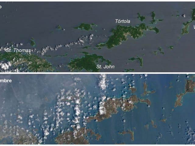 Las islas del Caribe se han vuelto marrones (literalmente) van el paso del huracán Irma