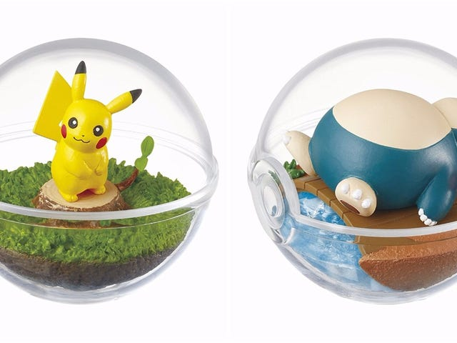 Um Look Inside Pokéball Terrariums