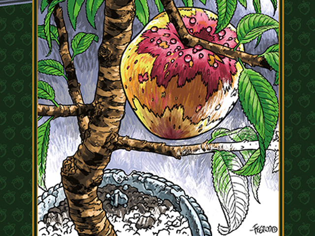 A Look Inside Chuck Palahniuk's Next Novella... Which Is Also a Coloring Book