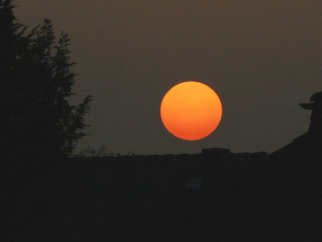 How a Dust Plume Turned the Sun Red