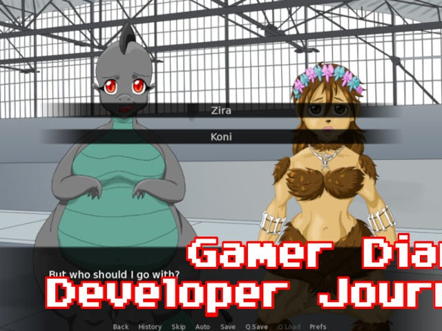 Developer Journal Weekly Report #17