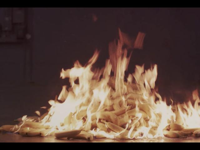 Вот все странное дерьмо, которое вы пропустили в музыкальном видео «Мальчики» в Charli XCX