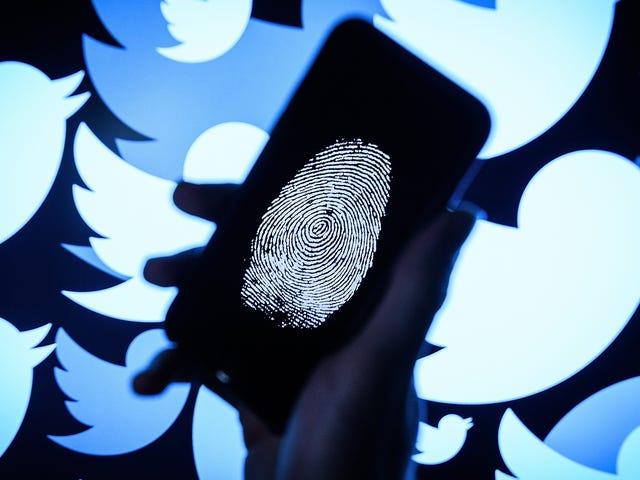 Twitter đang đình chỉ hơn một triệu tài khoản mỗi ngày trong lần thanh trừng mới nhất