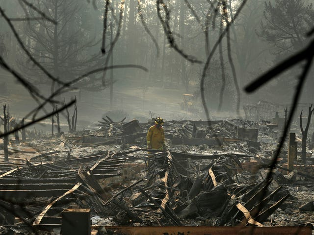 The Camp Fire Death Count Just Dropped by 3 Due to New DNA Evidence