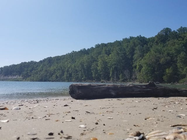 Few Relaxing Minutes on the Beach at Flag Ponds Nature Park