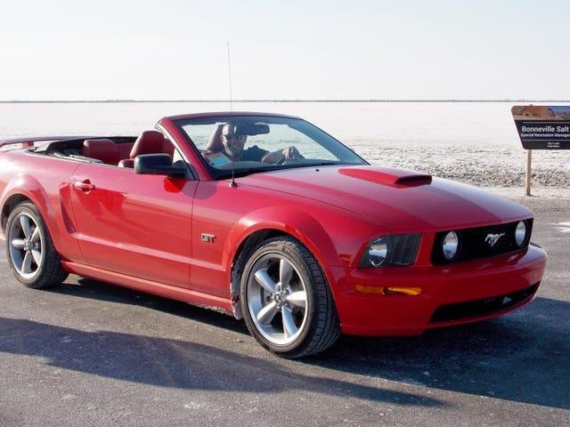 Bonneville & Two Mustangs...