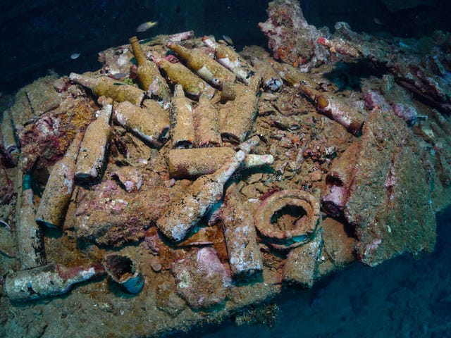 Shipwreck turns up century-old liquor that might be worth millions