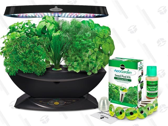 Grow Your Own Herbs and Veggies Indoors With This Discounted AeroGarden