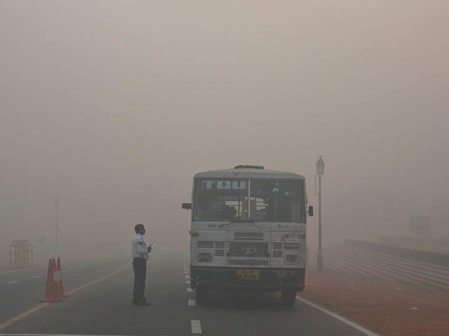 La India og Estado de emergencia: Som jeg har sagt, er det ikke så meget