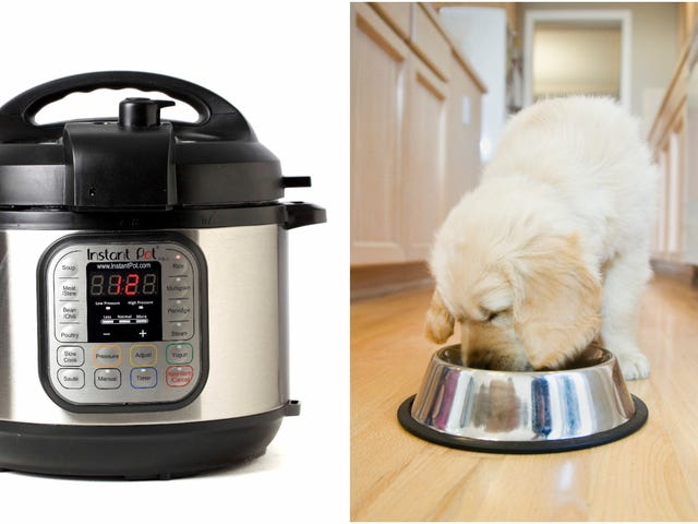 "<a href=""https://thetakeout.com/coming-soon-instant-pot-dog-food-meal-kits-1828058188"" data-id="""" onClick=""window.ga('send', 'event', 'Permalink page click', 'Permalink page click - post header', 'standard');"">Coming soon: Instant Pot dog food meal kits</a>"