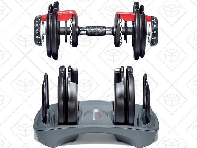 Bowflex's Insanely Popular Adjustable Dumbbells Are Cheaper Than They've Been In Months