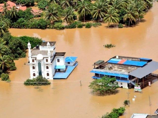 Hàng trăm người chết, một triệu người phải di dời khi mưa gió mùa tràn ngập Ấn Độ