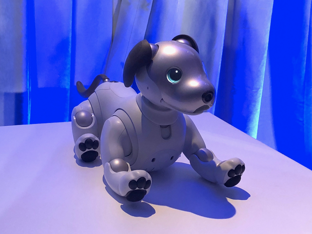 Sony's Robot Dog Aibo Will March Its Paws to American Homes in September for $2,900 a Pup