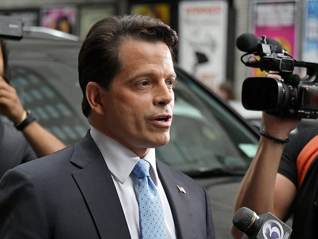 Anthony Scaramucci finally achieves celebrity status, at least according to Big Brother