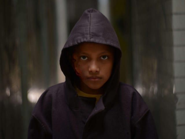 Sucesso do festival aprovado por Guillermo del Toro Tigres não tem medo de chegar aos cinemas em 23 de agosto