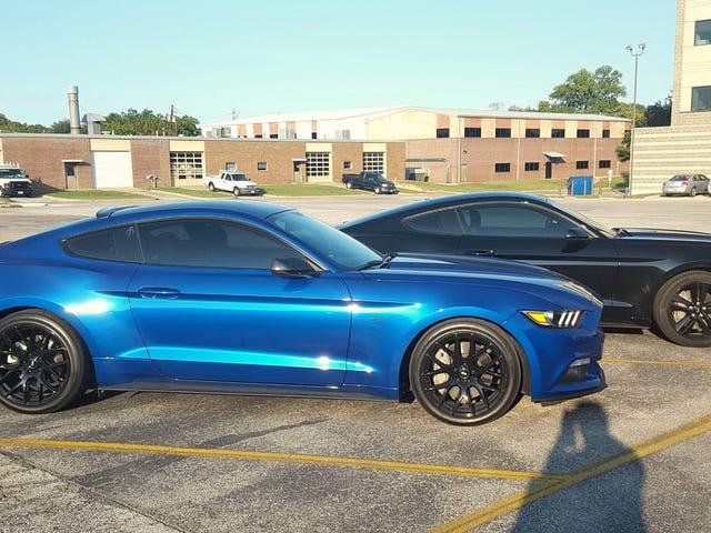 More gratuitous Mustang