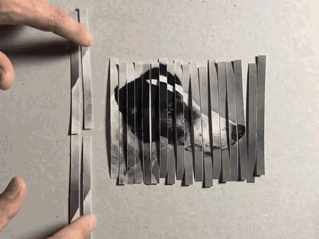 Está ilusión óptica multiplica perros como por arte de magia y además te enseña como funciona Photoshop