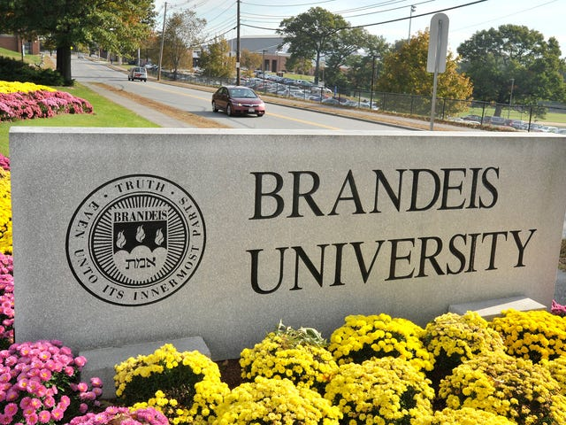 Brandeis Cleans House After Investigation Into Basketball Coaching Abuse