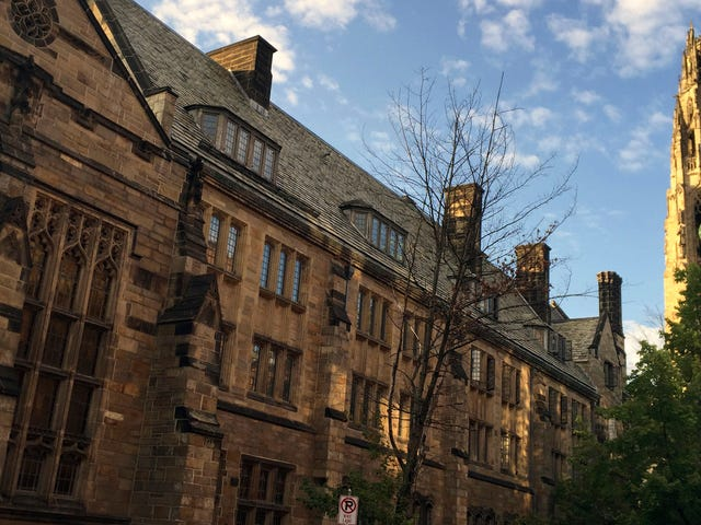 Women Sue Yale For Allowing Social Scene Dominated By Gross Fraternities