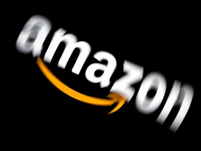 Ring Meminta Pelapor untuk Menghilangkan Pekerjaan Ukraine mengenai 'Banyak Projek Amazon Lain'