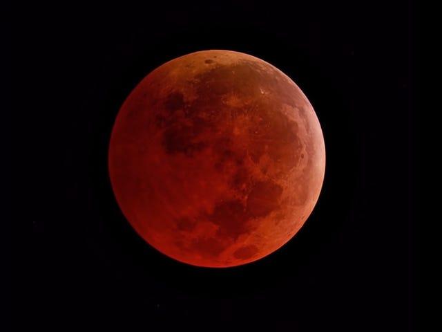 Cómo ver la superluna de sangre, el espectacular eclipse lunar total del próximo 20 de enero