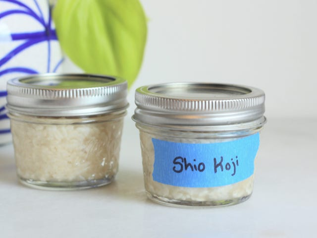 Shio Koji Helps Your Food Be Its Best Self
