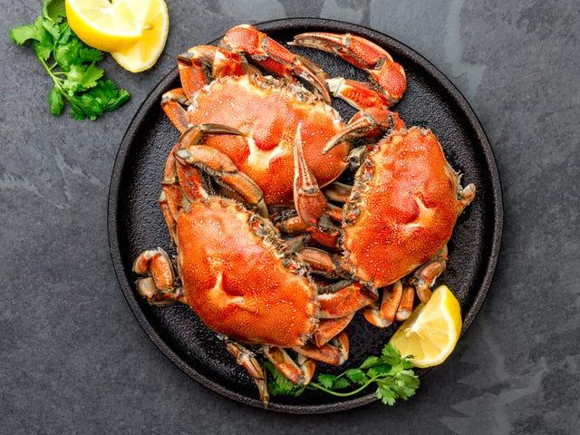 Sous-Vide är det perfekta sättet att förbereda krabba