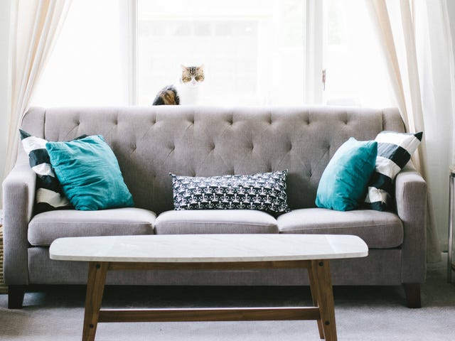 Deep Clean Your Couch With Baking Soda