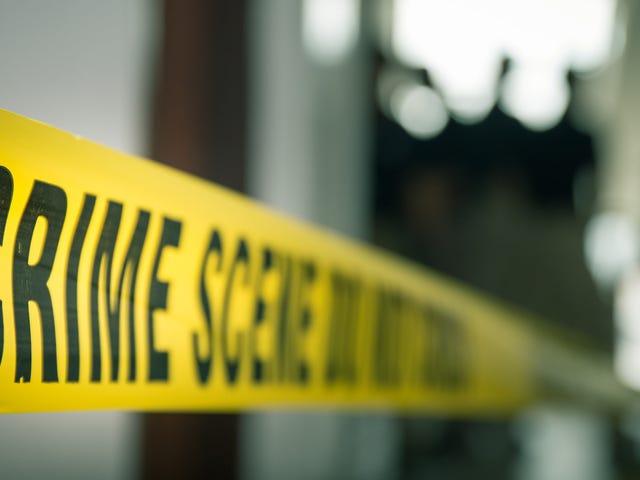 女子在追杀他之后杀死了一名男子,并获得了10万美元的保释金